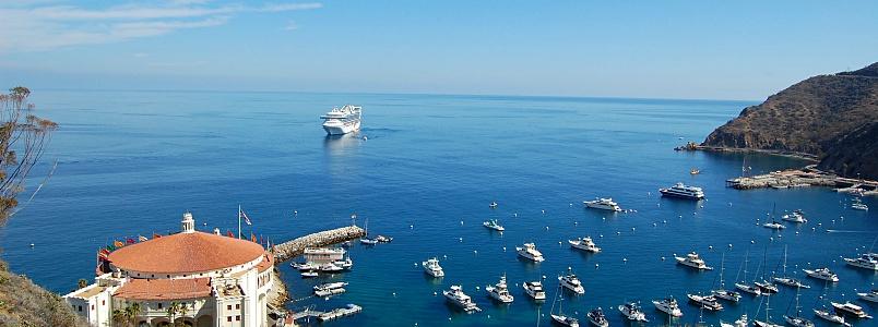 Die kleine Insel Catalina Island vor der Küste Kaliforniens gilt als echter Geheimtipp für Kreuzfahrer © Melanie Kiel