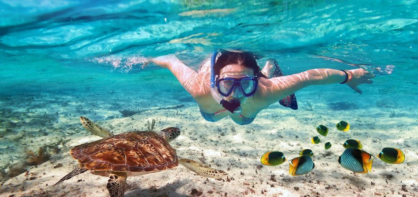 Woman snorkeling in tropical waters with sea turtle and fish