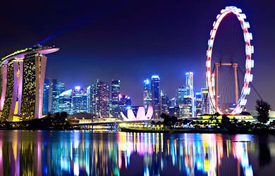 Die Skyline von Singapur mit dem Singapore Flyer bei Nacht