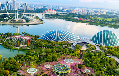 Gardens by the Bay aus der Vogelperspektive