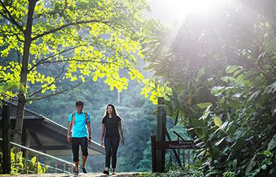 Die Botanischen Gärten Singapurs sind einen Besuch wert.