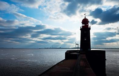 Viele Kreuzfahrtschiffe laufen Bremerhaven an
