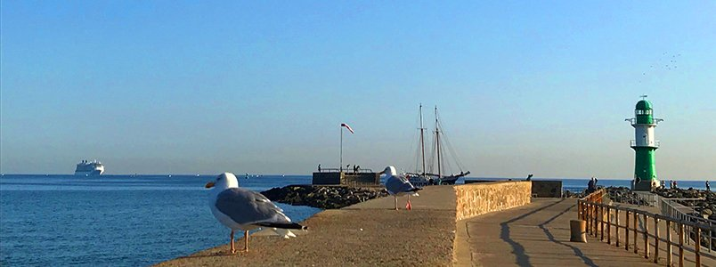 Ob Ozeanriesen oder Traditionssegler - Warnemünde ist ein Hotspot für Schiffsanläufe aller Art
